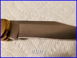 Buck 110 Knife One of a Kind Custom Oak Elk Antler with Blue Turquoise! New